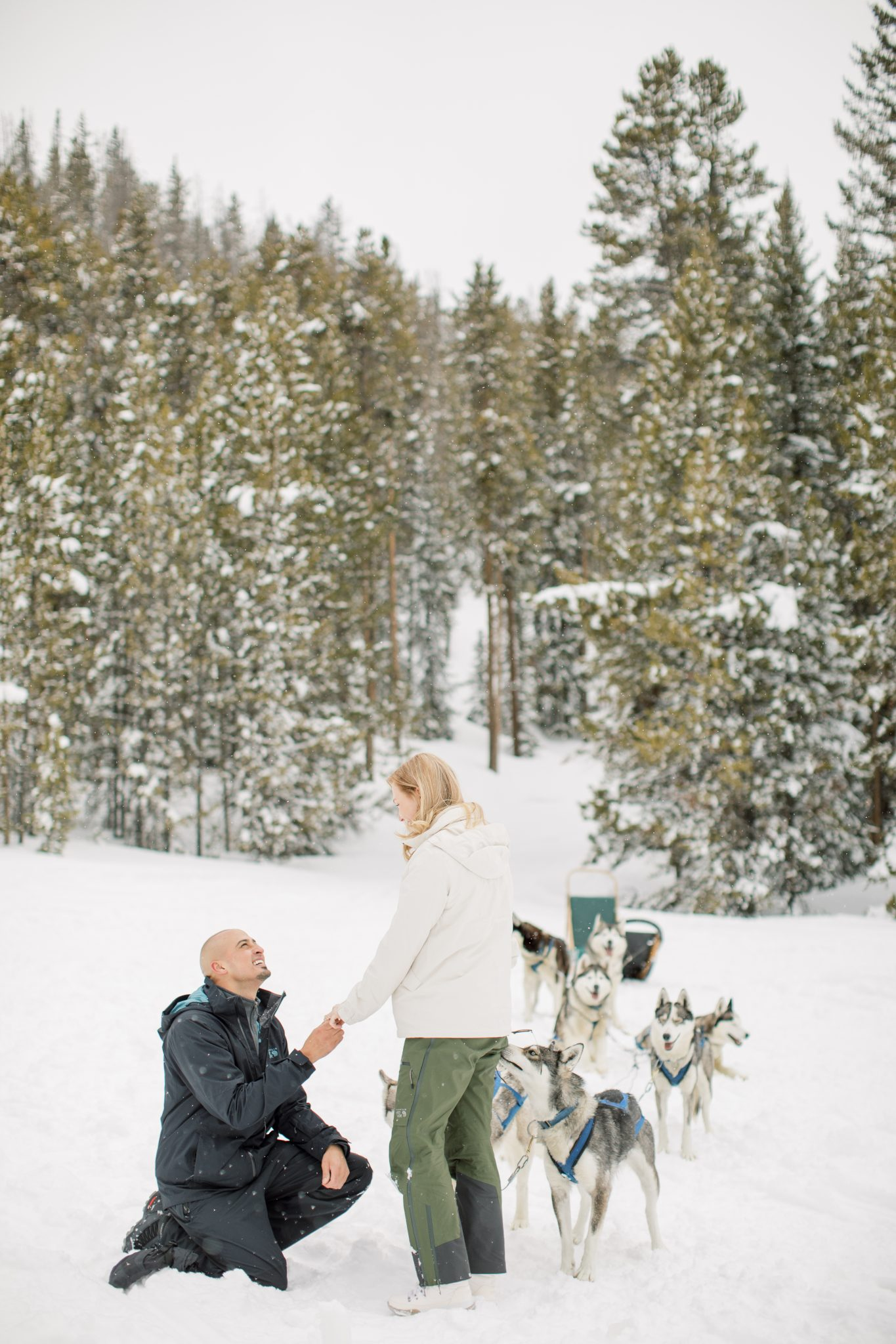 Dogsledding proposal in Breckenridge Colorado