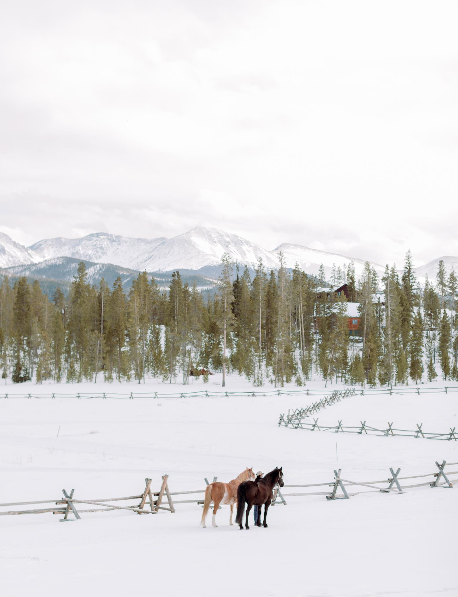 Devils-Thumb-Ranch-Tabernash-Colorado-Winter-Outdoor-Wedding-Horses
